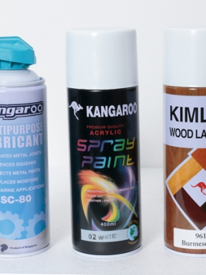 Aerosol Spray Paint (Metallic MS/00 & Non-Metallic WS/00)